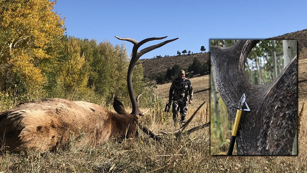Broadhead Selection for Big Game Hunts