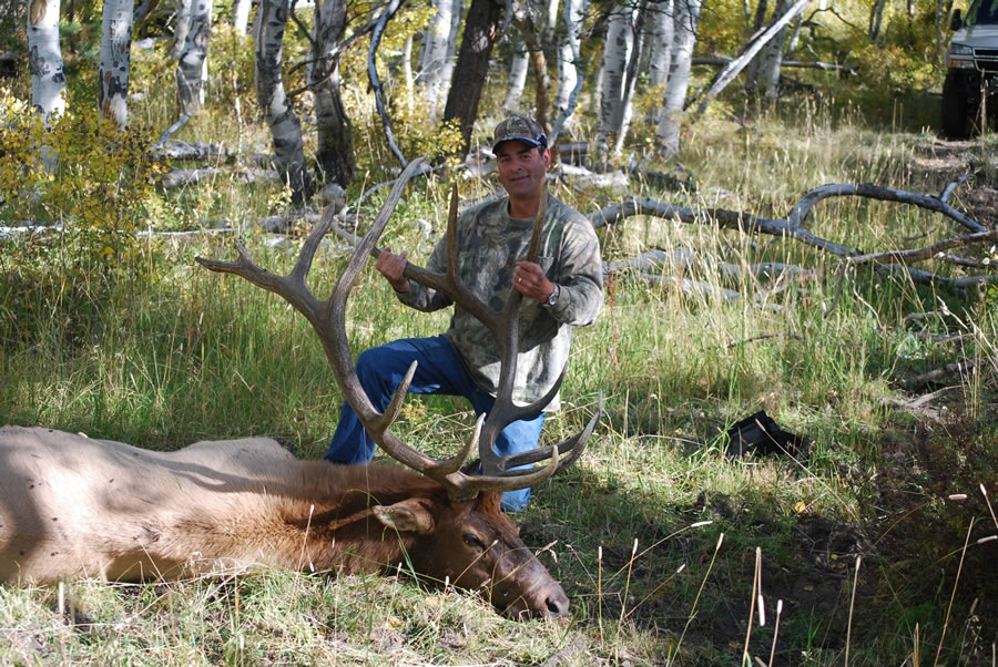 Elk Hunt Photo 21