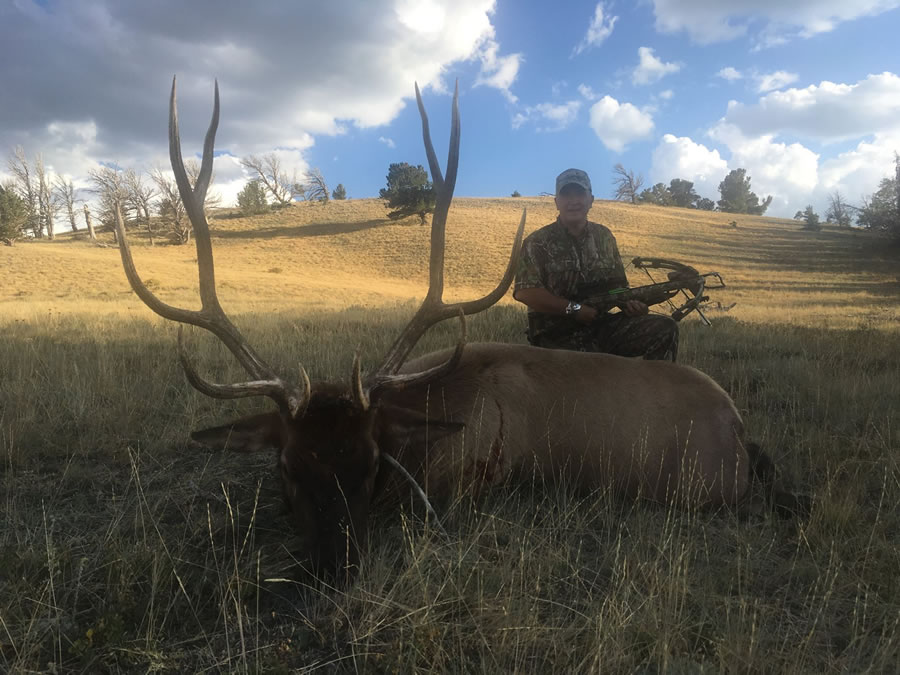 Elk Hunt Photo 22