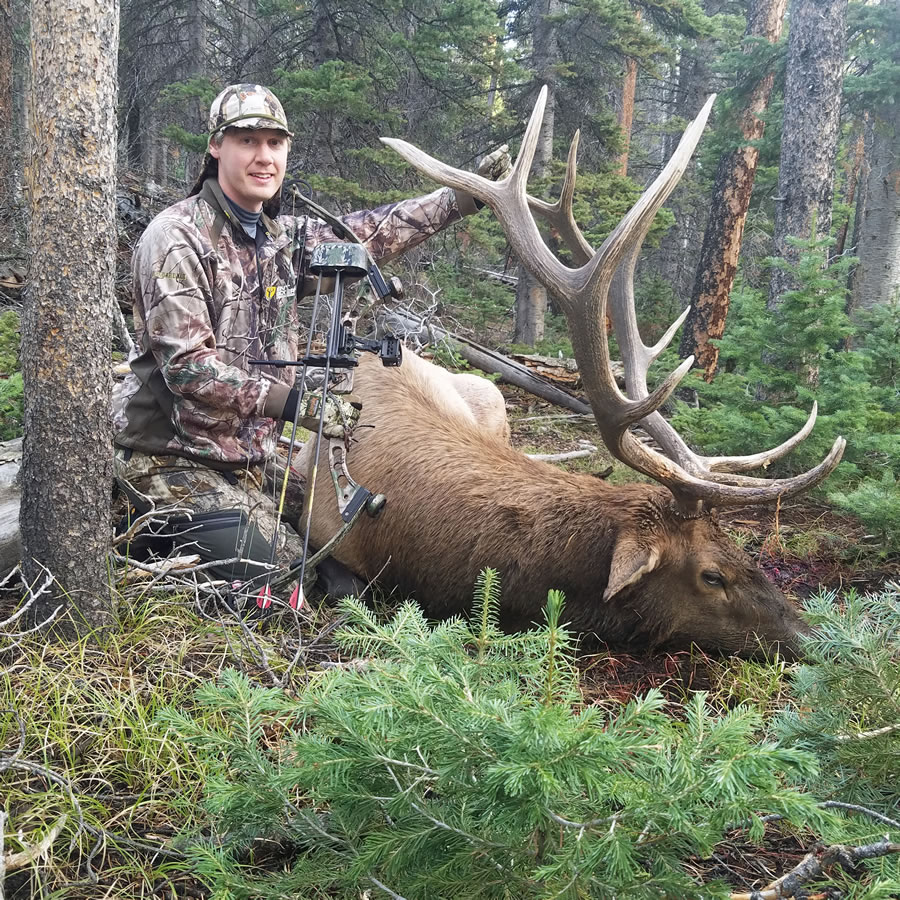 Elk Hunt Photo 11